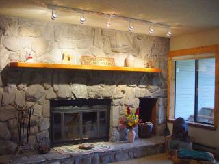 CRI221 Cinnamon Ridge - Aspen vacation rentals