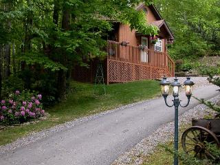 HONEYMOON CABIN- WIFI-HOT TUB,CREEK $ 695.00 week - Maggie Valley vacation rentals