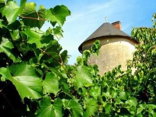 Tour St Therese - Saint-Loup-Lamaire vacation rentals