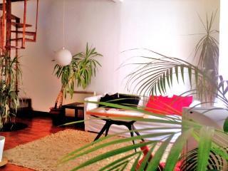 Bright 3 bedroom House in Alvorge - Alvorge vacation rentals