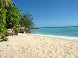 Modern Beachfront 2 Bed Apt in St. Lawrence Gap - Saint Lawrence Gap vacation rentals