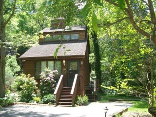 Romantic JOY CHALET: King/Hot Tub/FP/Massage Chair - Asheville vacation rentals