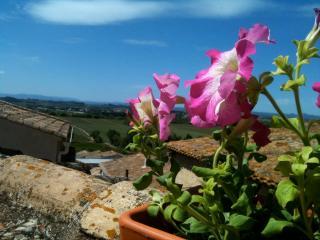 French Mediterranean Village House w  Roof Terrace - Pezenas vacation rentals