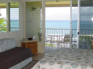 Napili Shores Oceanfront Studio & 1 Bdrm Oceanview - Napili-Honokowai vacation rentals