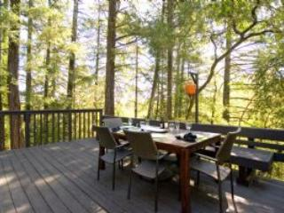 Comfortable 2 bedroom House in Forestville - Forestville vacation rentals