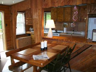 Cozy cabin in the woods near hiking/biking & lakes - Northeast Kingdom vacation rentals