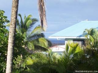 Tropical Retreat Kapoho - Pahoa vacation rentals
