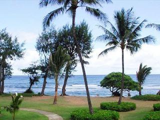 Affordable beachfront luxury - with a/c - Kapaa vacation rentals