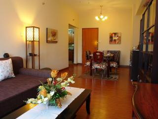 Exceptionally Well Furnished 2Bedroom Luxury Condo - Luzon vacation rentals