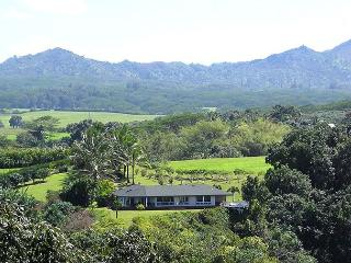 North Shore home with Waterfall Views - Kilauea vacation rentals