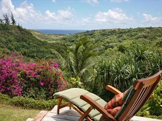 North Shore home with Waterfall Views - Kilauea vacation rentals