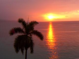 Very Best Condo@$145/nightBeachFrontSeePhotos - Montego Bay vacation rentals