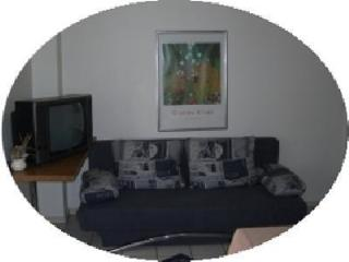 Vacation Apartment in Usingen - 538 sqft, nice, modern, clean (# 683) - Usingen vacation rentals