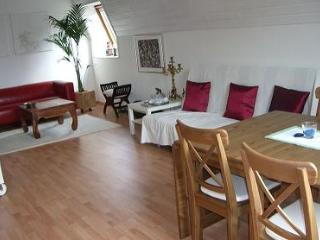 Vacation Apartment in Essen - 592 sqft, beautiful location, convenient, comfortable (# 2122) - Dortmund vacation rentals
