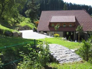 LLAG Luxury Vacation Apartment in Triberg im Schwarzwald - 592 sqft, comfortable, nice furnishings (#… - Baden Wurttemberg vacation rentals