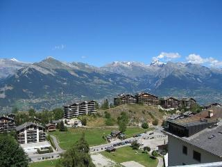 Nice Condo with Internet Access and Wireless Internet - Nendaz vacation rentals