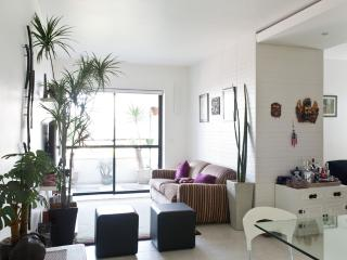 Bright 1 Bedroom Apartment with Pool in Vila Olimpia - Sao Paulo vacation rentals