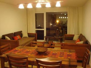 Modern One Bedroom Apartment in Patagonia - Patagonia vacation rentals