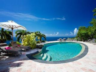 Deluxe villa Cristobal on 75 acres offers total privacy, heated pool & minutes to beach - Gouverneur vacation rentals