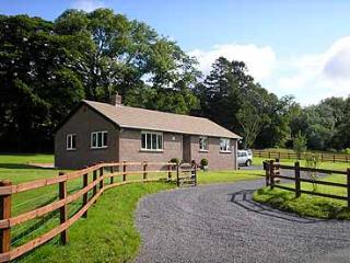 Lovely 3 bedroom House in Llanllawddog - Llanllawddog vacation rentals