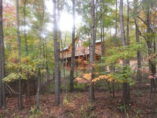 Pet friendly Cabin Rental in Ellijay Ga with Huge Game Room - Ellijay vacation rentals