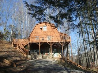 Black Bear Cabin - Ridgecrest vacation rentals
