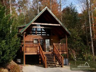 Beary Cozy Jetted Tub Pool Access Hot Tub Pets Grill WiFi  Free Nights - Gatlinburg vacation rentals