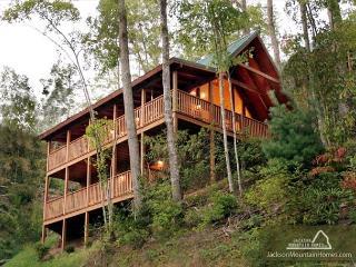 Big Sky Cabin   Hot Tub Pool Access King Beds View Gaming  Free Nights - Gatlinburg vacation rentals