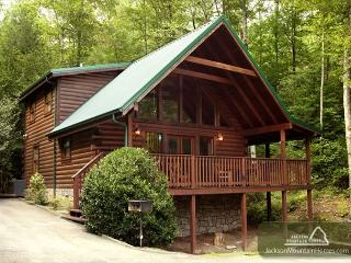 On Smoky's Pond   Pool Access Hot Tub FireplaceViews WiFi  Free Nights - Gatlinburg vacation rentals
