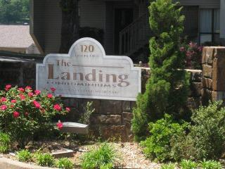 Landing 8A - Hot Springs vacation rentals