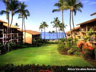 Lovely Condo in Kailua-Kona (Nice 1 BR/1 BA Condo in Kailua-Kona (K3-KM 4-104)) - Waikoloa vacation rentals