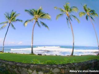 Super Condo in Kailua-Kona (K3-KR A4) - Kailua-Kona vacation rentals