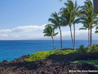 Amazing Condo with 2 BR-2 BA in Waikoloa (W5-HALII 15A) - Waikoloa vacation rentals
