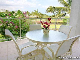 Waikoloa 1 Bedroom/2 Bathroom Condo (W2-V B206) - Kohala Coast vacation rentals