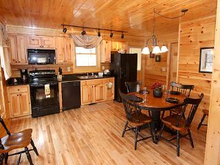 The Silver Fox - Gatlinburg vacation rentals