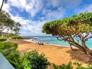 Napili Bay Resort, Condo 106 - Lahaina vacation rentals