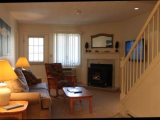 2BR multi-level condo with walk-in closet - 3A 303A - Lincoln vacation rentals