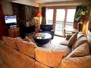 Aspen 2 BR-2 BA Condo (Super Condo in Aspen (Lift One - 202 - 2B/2B)) - Aspen vacation rentals