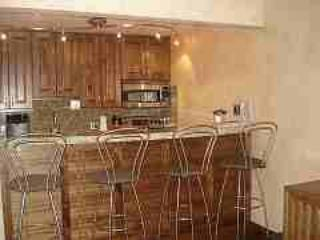 Fabulous Condo in Aspen (Aspen 1 BR, 1 BA Condo (Lift One - 209 - 1B/1B)) - Aspen vacation rentals