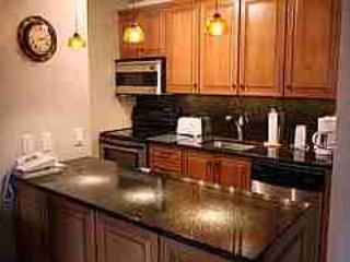 Gorgeous Condo with 1 BR-1 BA in Aspen (Perfect 1 BR/1 BA Condo in Aspen (Lift One - 304 - 1B/1B)) - Aspen vacation rentals