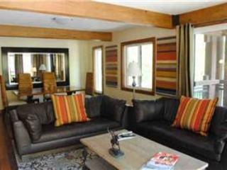 Comfortable 3 Bedroom-3 Bathroom Condo in Aspen (Lift One - 306 - 3B/3B) - Snowmass vacation rentals