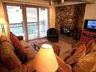 Heavenly 2 Bedroom/2 Bathroom Condo in Aspen (Nice 2 BR/2 BA Condo in Aspen (Lift One - 308 - 2B/2B)) - Image 1 - Aspen - rentals