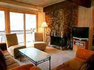 Beautiful 2 Bedroom, 2 Bathroom Condo in Aspen (Aspen 2 Bedroom, 2 Bathroom Condo (Lift One - 407 - 2B/2B)) - Image 1 - Aspen - rentals