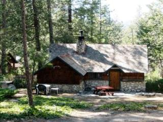 Artist Cottage - Idyllwild vacation rentals