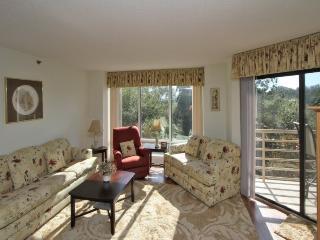 3228 Villamare - Sea Pines vacation rentals