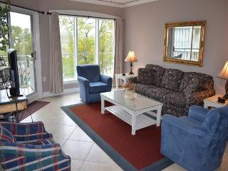 403 Windsor Place - Hilton Head vacation rentals