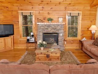 Hacienda - Tennessee vacation rentals