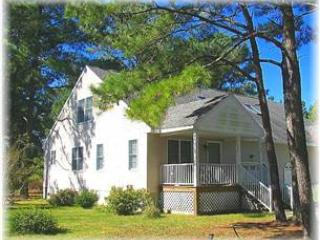 Blissful Way - Image 1 - Chincoteague Island - rentals