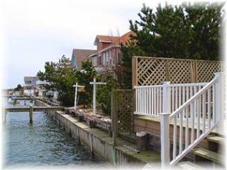 Lover's Lane - Image 1 - Chincoteague Island - rentals