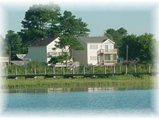 Wildflower - Image 1 - Chincoteague Island - rentals